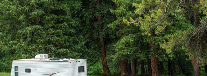 An RV parked in the forest during a dispersed camping trip.